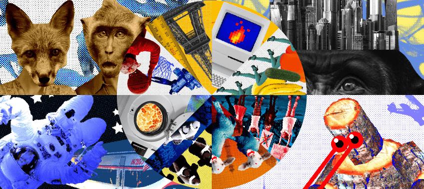 Иллюстрация к новости: «Открытая лабораторная» - 2019
